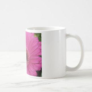 flower,pink gerber daisy coffee mugs
