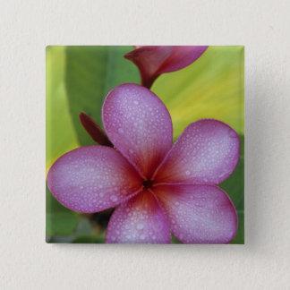Flower, Plumeria sp.), South Pacific, Niue 15 Cm Square Badge