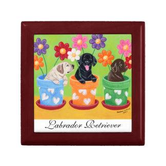 Flower Pot Labrador Puppies Gift Box