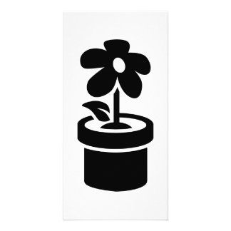 Flower pot photo greeting card