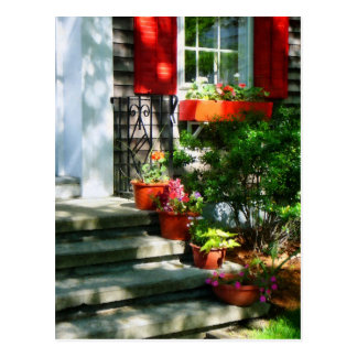 Flower Pots and Red Shutters Postcard