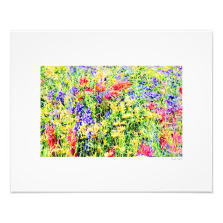 "Flower Power 20""x16"" Photo Print"