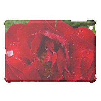 Flower Power & Nature iPad Case - Red Rain Rose