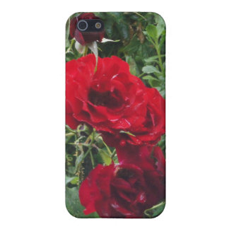 Flower Power & Nature iPhone 4 Case - Dark Rose