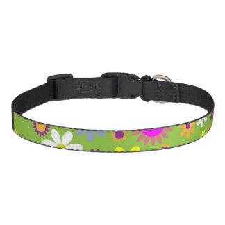 Flower Power Pet Collar