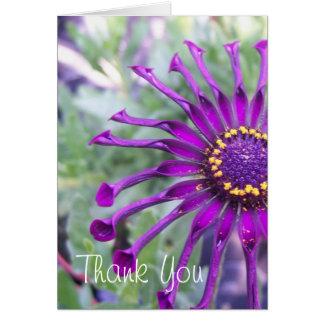 Flower Power Spider Purple Flower Notecard Note Card