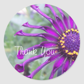 Flower Power Spider Purple Thank You Stickers