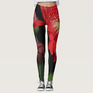 Flower Power! Vivid Red Gerbera Daisy on dk green Leggings