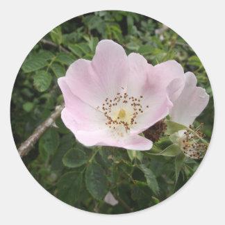 Flower- Print Classic Round Sticker