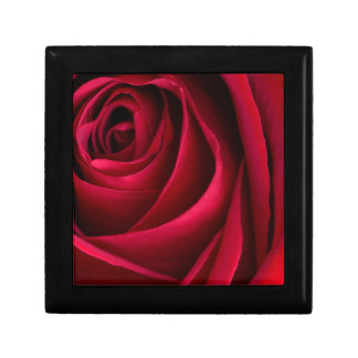 Flower Red Rose Small Square Gift Box