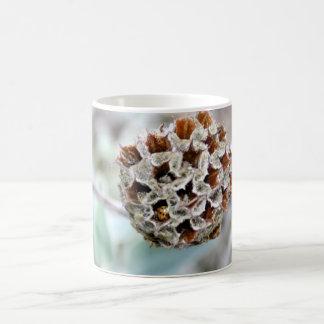 Flower Seed Head with Ladybird/Ladybug Mug