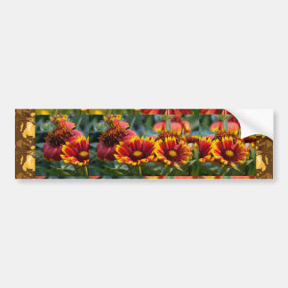 Flower Show Different Stages of Wild Bloom Bumper Stickers