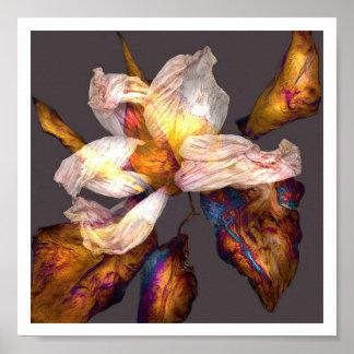 Flower Song Poster