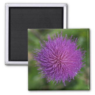 Flower Square Magnet