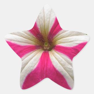 Flower Star Sticker