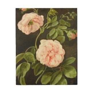 Flower Study 2 Wood Print