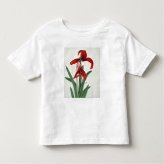 Flower Study, Toddler T-Shirt