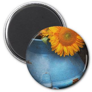 Flower - Sunflower - Little blue sunshine Magnet