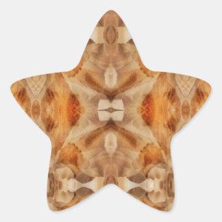 Flower symmetry star sticker