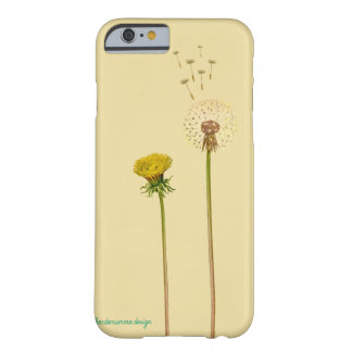 Flower - Taraxacum officinale - dandelion Barely There iPhone 6 Case