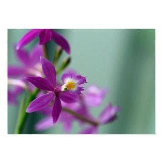 Flower Tenderness Business Cards