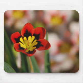 Flower to be cherished mouse pad