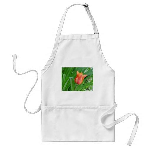 flower,tulip aprons