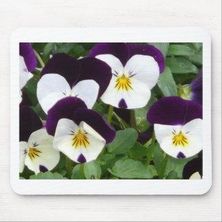 flower,viola mouse pads