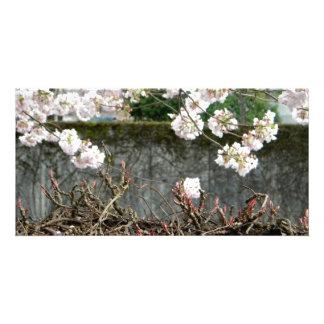 Flower Wall Customized Photo Card