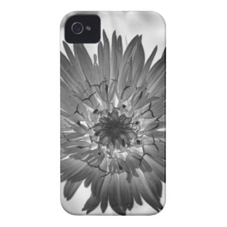 flower xray Case-Mate iPhone 4 cases