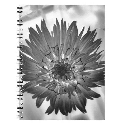 flower xray spiral note books
