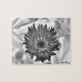 flower xray puzzles