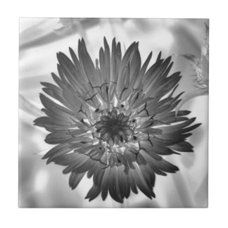 flower xray small square tile