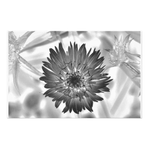 flower xray stationery design
