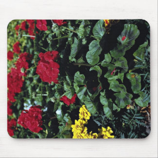 Flowerbed Mousepads
