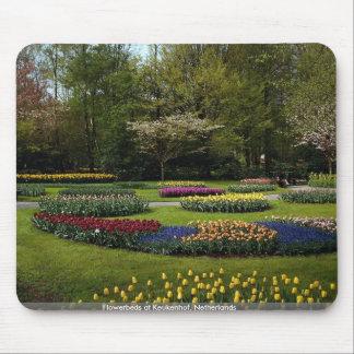 Flowerbeds at Keukenhof Netherlands Mousepad