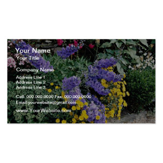 Flowerbeds on the grounds of Hadden Hall, England Business Card