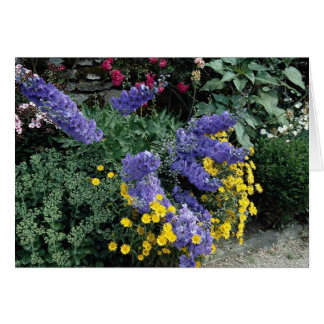 Flowerbeds on the grounds of Hadden Hall, England Greeting Card