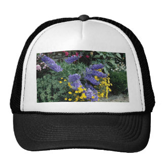 Flowerbeds on the grounds of Hadden Hall, England Hats