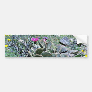 Flowering Beavertail Cactus With Wildflowers Bumper Stickers