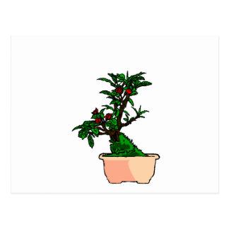 Flowering Bonsai in Pink Square Pot Postcard