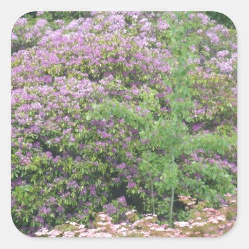 Flowering Bush Square Stickers