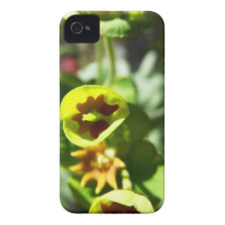 Flowering Case-Mate iPhone 4 Case