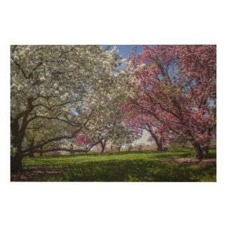 Flowering Crabapples Wood Canvas