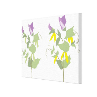 Flowering Pea Plants Canvas Print