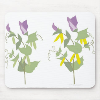 Flowering Pea Plants Mouse Mat