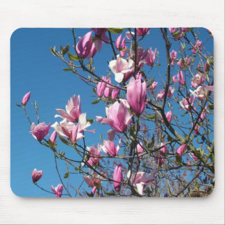 flowering purple and pink spring magnolia mouse pad