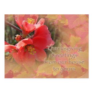 Flowering Quince - Chaenomeles speciosa Postcard