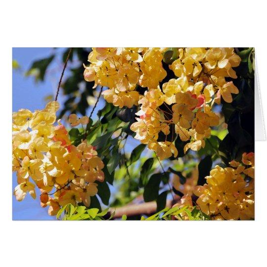 Flowering Rainbow Shower Tree Card