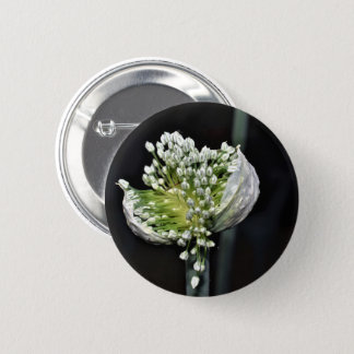 Flowering Spring Onion 6 Cm Round Badge